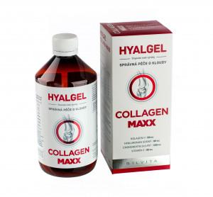 Hyalgel Collagen MAXX 2x500 ml