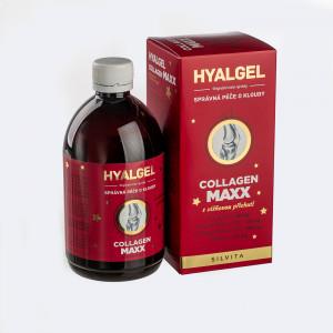 Hyalgel Collagen MAXX VIŠEŇ vánoční edice 2020 2x500 ml