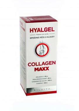 Hyalgel Collagen Max 500 ml